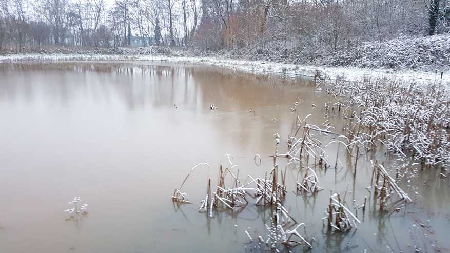 Kesselse-Heide-winter-14